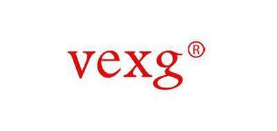 VEXG电机锁