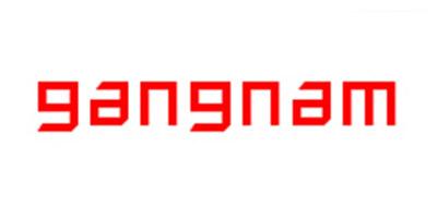 gangnam三轮电动车