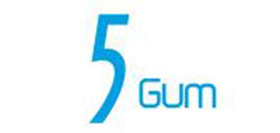 5 GUM口香糖