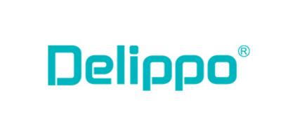 delippo电脑电源