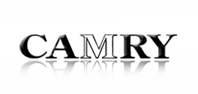 CAMRY体脂秤