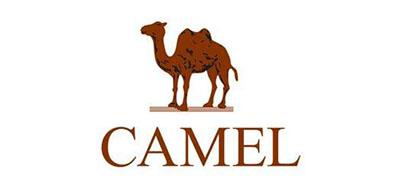 骆驼polo衫