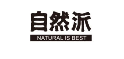 自然派卤鸡翅