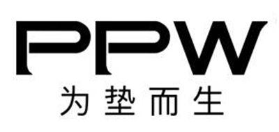 PPW孕妇腰枕