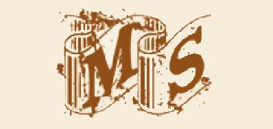 MS男士手提包