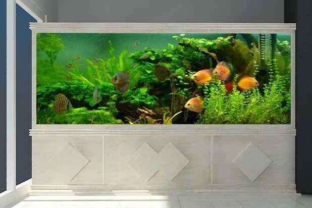 日生鱼缸价格?日生鱼缸怎么样?