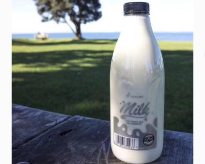 纯牛奶可以加热吗?新西兰纯牛奶好喝吗?