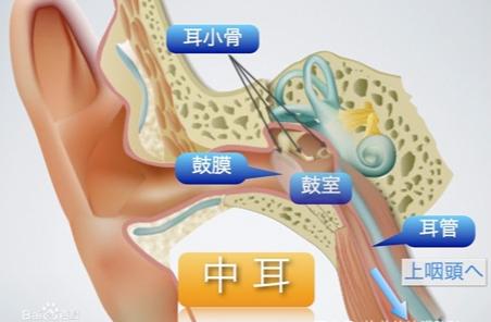 耳朵突然疼是怎么回事?这些细节不能大意!
