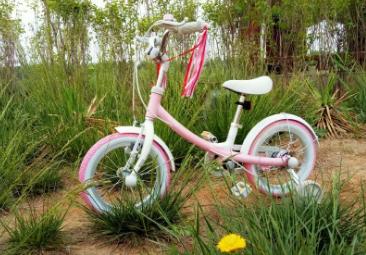 ninebot自行车评测?ninebot自行车适合多大的孩子?