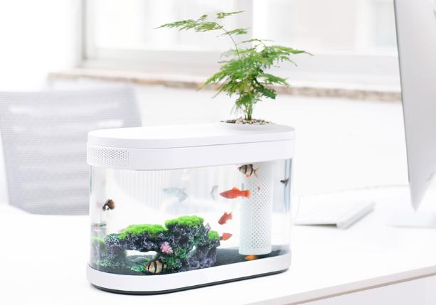画法几何鱼缸评测?画法几何鱼缸性价比如何?