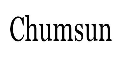 CHUMSUN雙拾音器